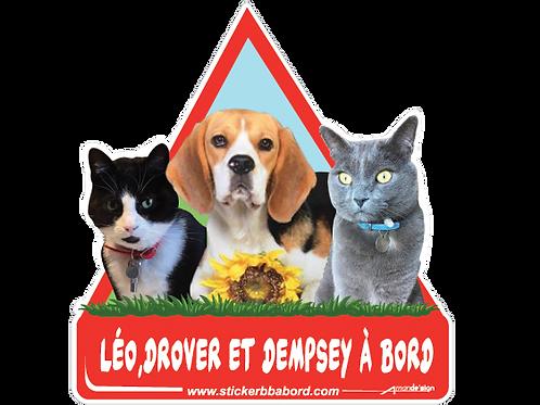Leo, Drover et Dempsey a bord