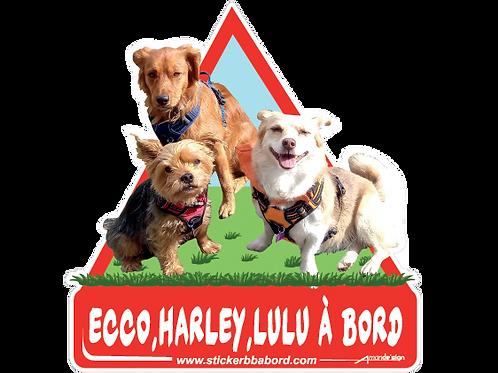 Ecco, Harley, Lulu a bord