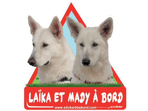 Laika et Mady a bord