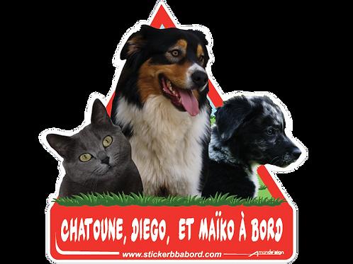 Chatoune, Diego et Maiko a bord