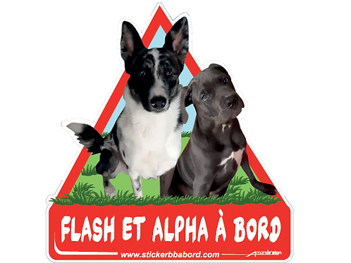 Flash et Alpha a bord