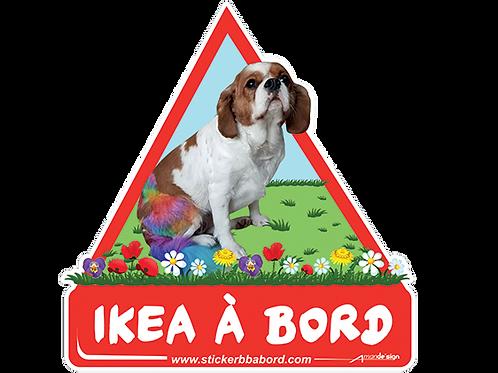 Ikea a bord