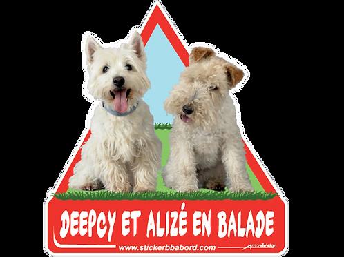 Deepcy et Alize a bord