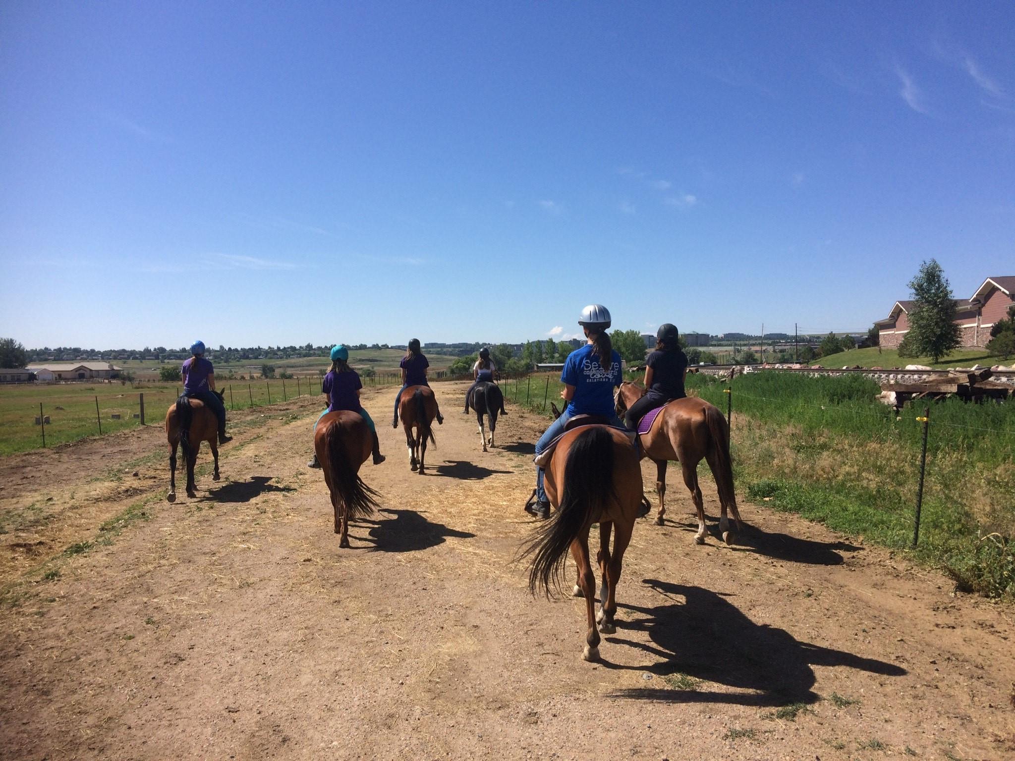 Advanced Horseplay-G, 2021