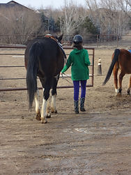 HorsePlay LLC