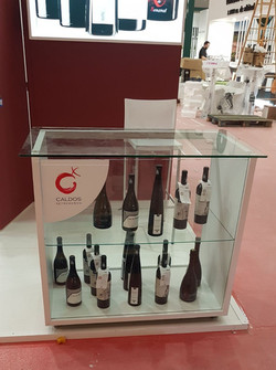 FENAVIN_2017_CALDOS_(2)