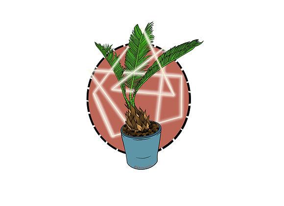 Mr. Mi Sago Palm Sticker 3.5 inch