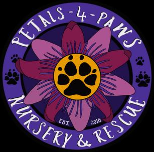 Petals 4 Paws Logo Design