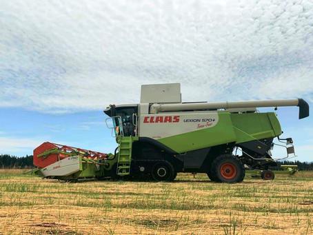 Harvesting 2020