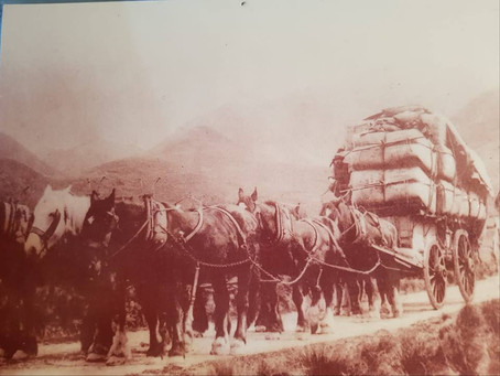 Contracting has been in the Topp family since the 1800's