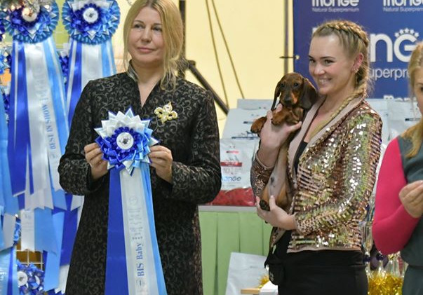 Best In Show Puppy Russia Zimerbude Fedo