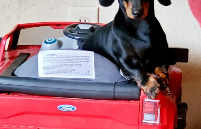 Prince truck driver.jpg