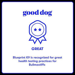 Bullmastiff badge.jpg