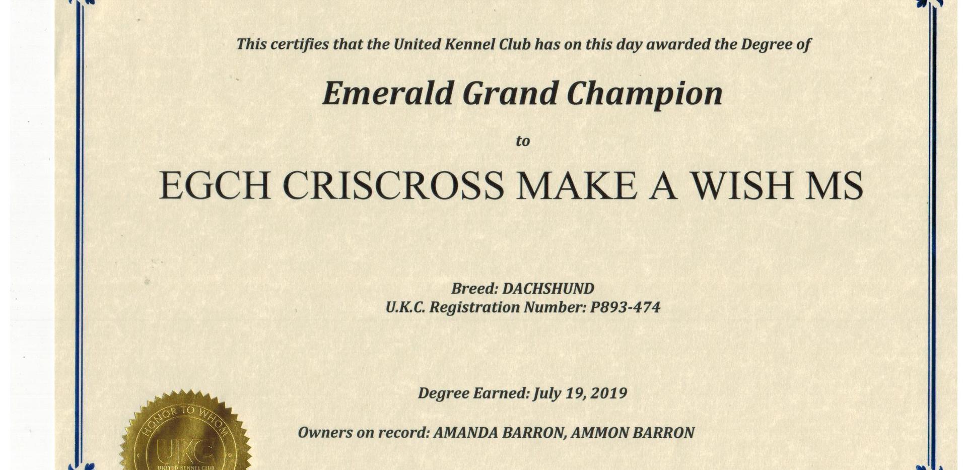 Prince EMGC UKC.jpeg