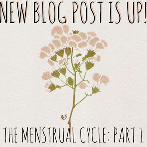 Menstrual Cycle: Part 1