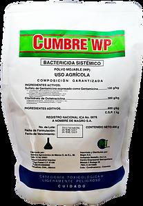 Cumbre WP | Bactericida Sistemático | Magro S.A