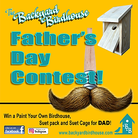 Father's Day Birdhouse Contest