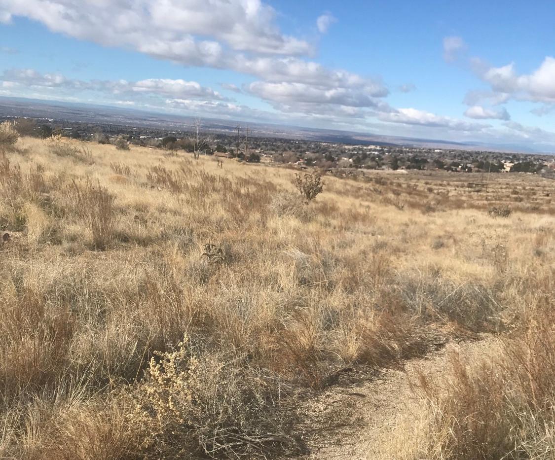 Southern Piedra Lisa Trail