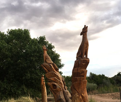and places to explore!