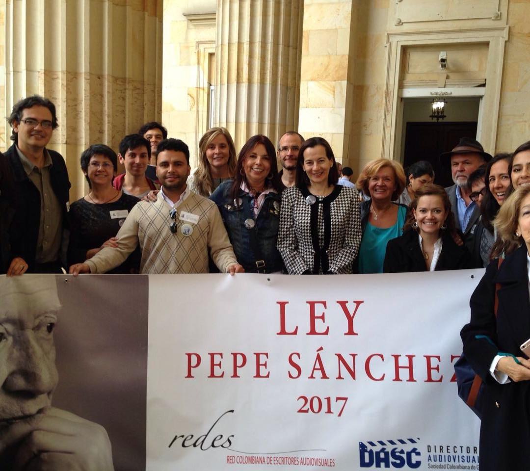 Ley Pepe Sanchez