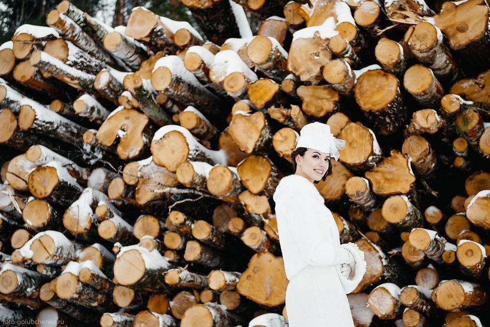 Необычная фотосессия на фоне срубленных деревьев. Белоснежное платье ярко контрастирует с рыжим цветом среза стволов.