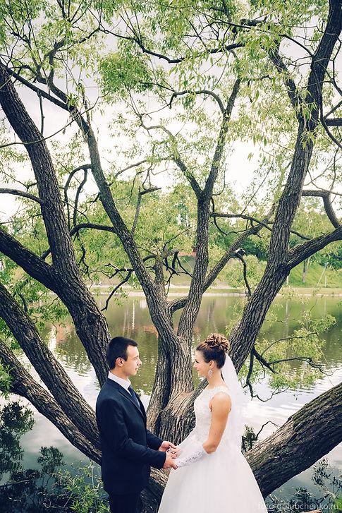"""Классический портрет молодоженов на фоне ветвистого дерева, символизирующего счастливый супружеский союз. """"Древо жизни"""" олицетворяет связь со своим родом, а в данном случае соединение двух родов."""