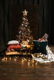 Уникальная локация для тех, кому нужны необычные фотографии. Очень теплая и уютная композиция с большим количеством новогодних игрушек.