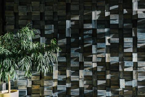 Деревянные фоны, в сочетании с живыми растениями, создают теплую уютную атмосферу. Это важно для съемочного процесса, чтобы клиенты быстрее адаптировались к пространству.