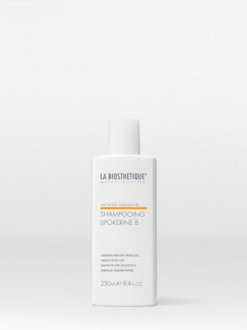 Shampooing Lipokérine B 250ml
