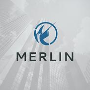 First National Merlin Logo Update Concept