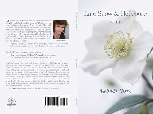 Late Snow and Hellebore
