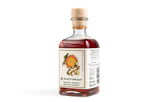 Americano agrumi e zenzero (MONODOSE 100 ml)