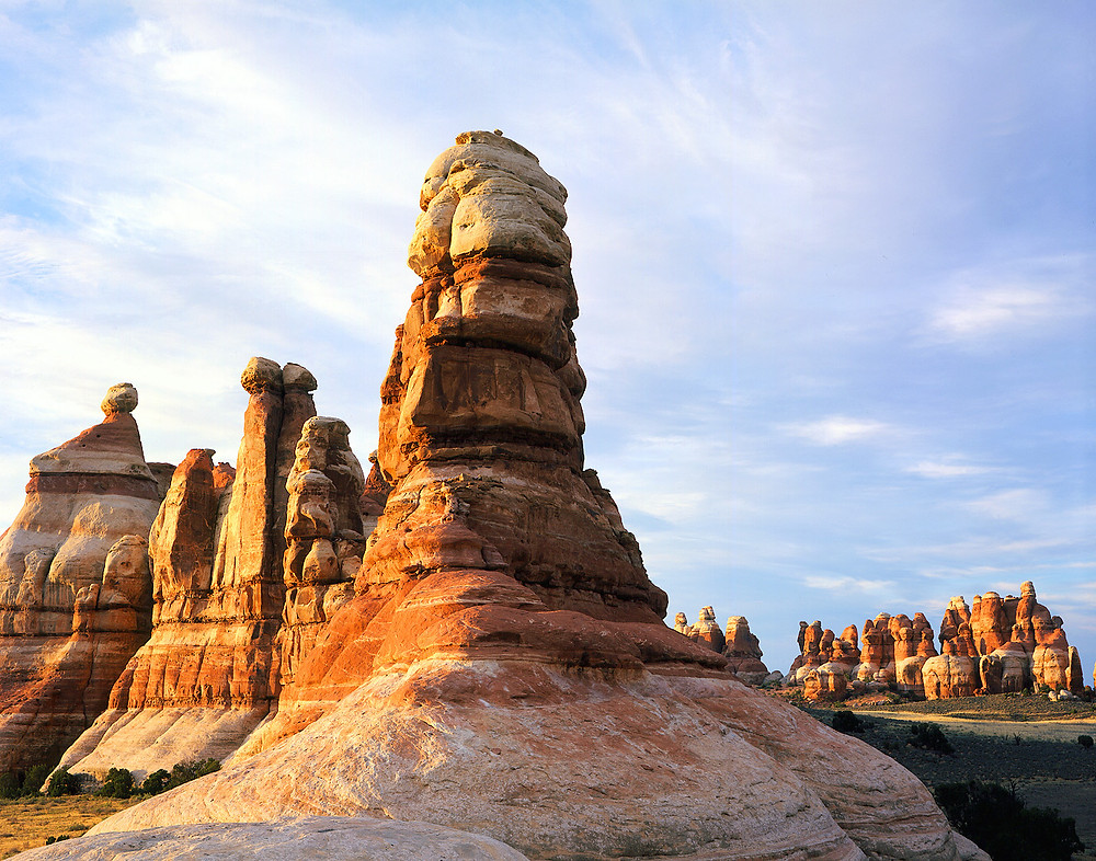 The Needles district in the Canyonlands Nationalpark