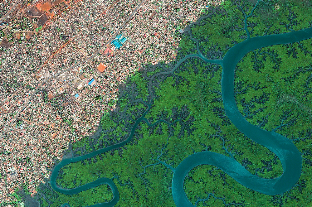 Conakry Satellite Image