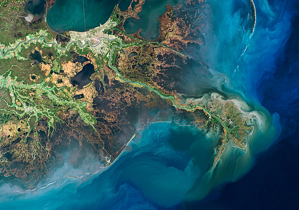 Satellite Image of the Mississippi River Delta