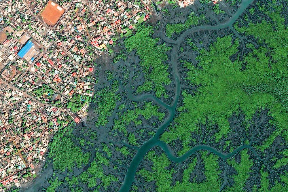 Conakry Mangroves satellite image