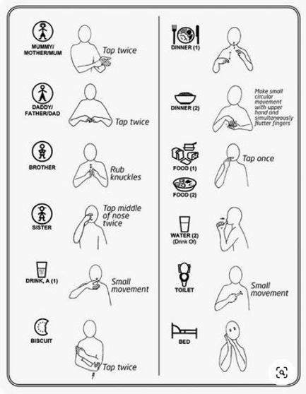 makaton-basic-signs.jpg