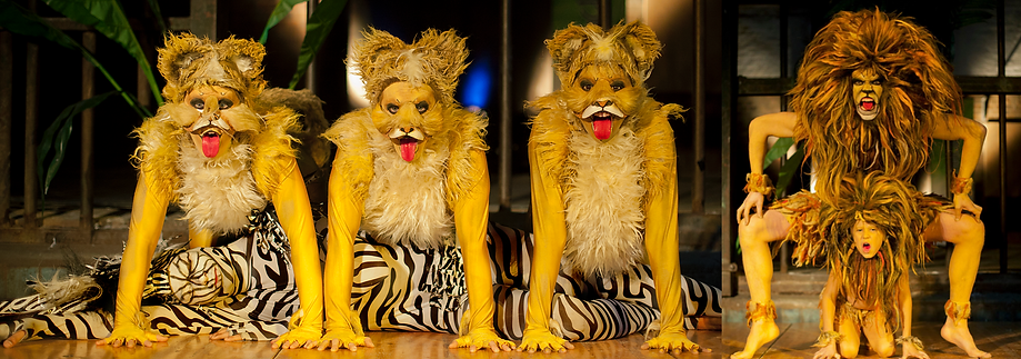Artists in realistic lion and zebra costumes performing stories of the circle of life