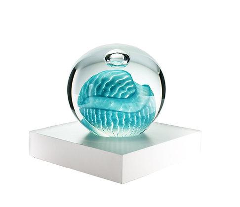 Planet Earth Aqua I
