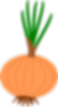 onion-2338844_960_720.png