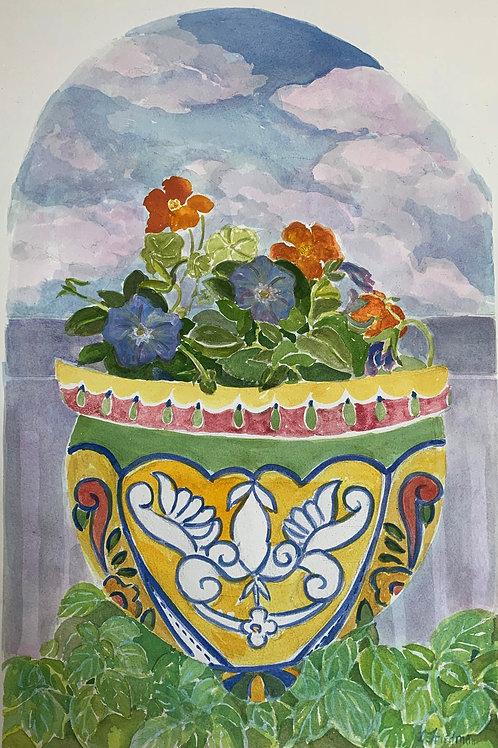 Pansies and Nasturtium