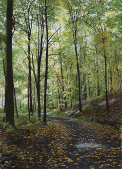 Mohonk Preserve Path I