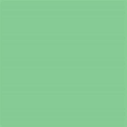 Linkstar Background Roll 73 Summer Green  2,75 x 11 m