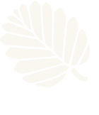 Spa%20House%20logo%20NEW%20colour-Light_