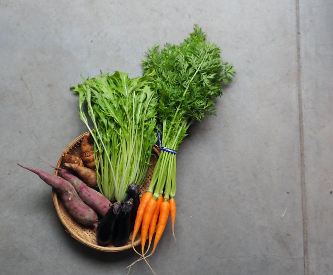 いつでも旬の味をお気軽に!有機野菜お試しSサイズ【必ず5種類】