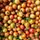 Thumbnail: 有機トマトのケチャップ
