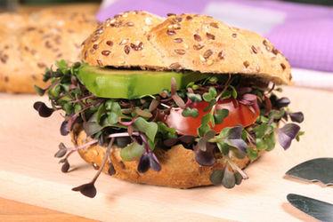 Vegetarian Burger With Fresh Microgreens