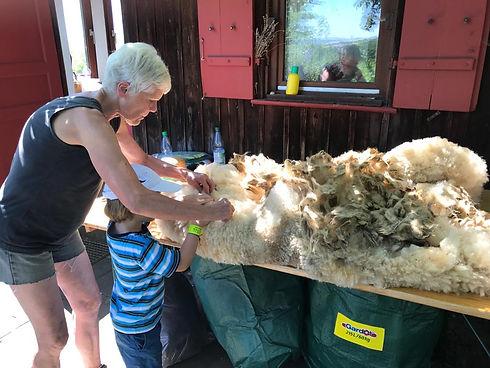 IMG-20190630-WA0011- Kinder Wolle wasche