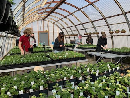 Empowering Oregon Teens: Cleaning up the Greenhouse