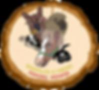 wrangler_clipped_rev_1.png